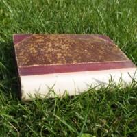 Kurzy písania verzus autori kníh