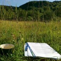Ako vydať knihu – cenník poradenstva